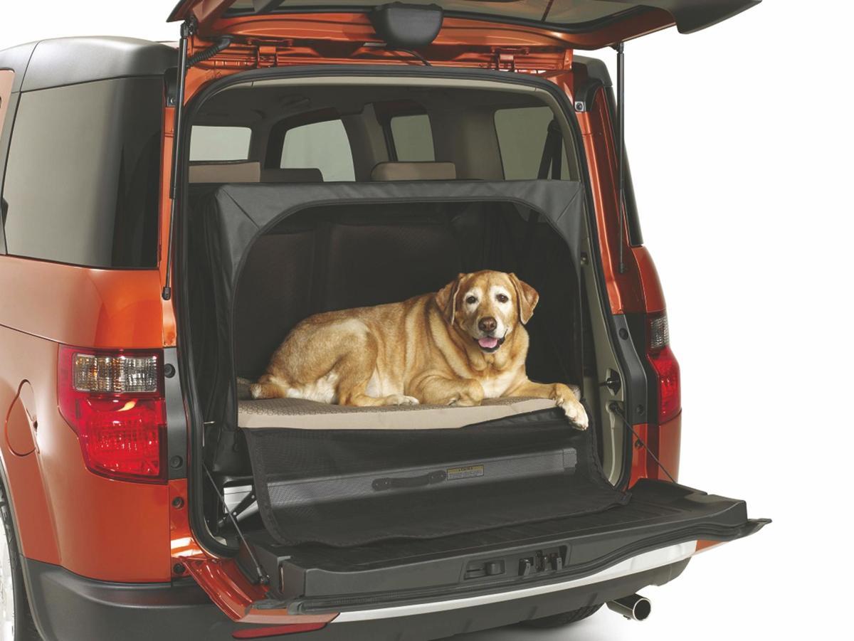 Used Vehicle: Honda Element