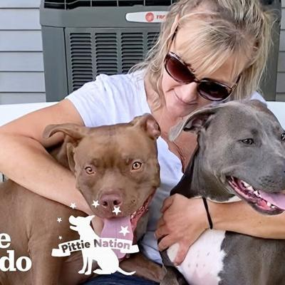 Pitties Are Obsessed With Their Grandma | The Dodo Pittie Nation