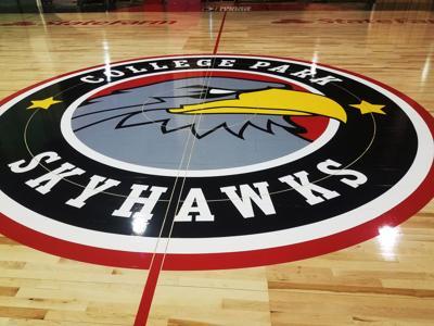 Skyhawks Court, Logo.jpg