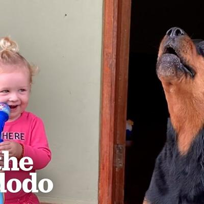 Loyal Rottweiler Copies Everything Her Baby Sister Does | The Dodo Soulmates