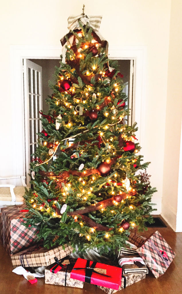 Home Depot Taking Christmas Trees For Free News News Daily Com - Christmas Trees In Home Depot