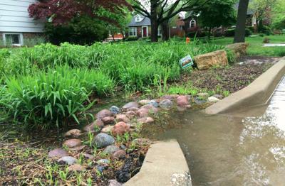In the Garden | Let it rain