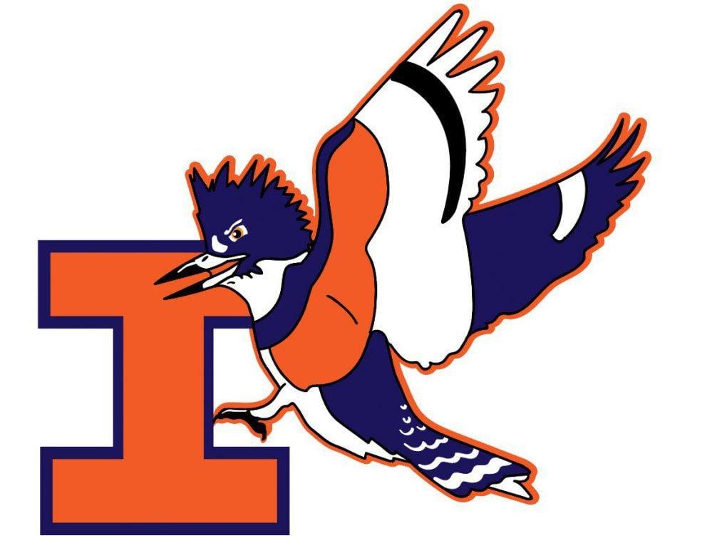 UI mascot kingfisher design