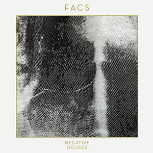 Chicago Post-Punk: Interview with Brian Case of FACS