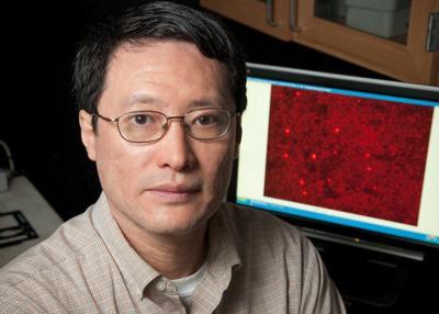 UPDATED: UI trustees fire tenured professor over falsified research