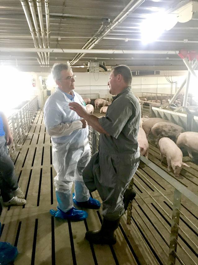 Fithian hog facility tour1