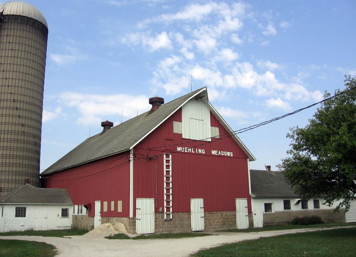 With the barn.jpg
