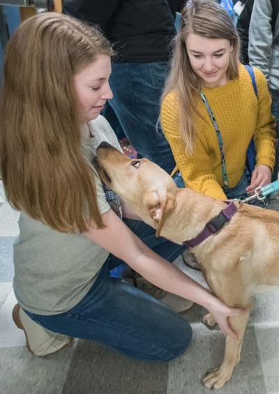 UI students unveil dog-human 'translator' at Engineering Open House