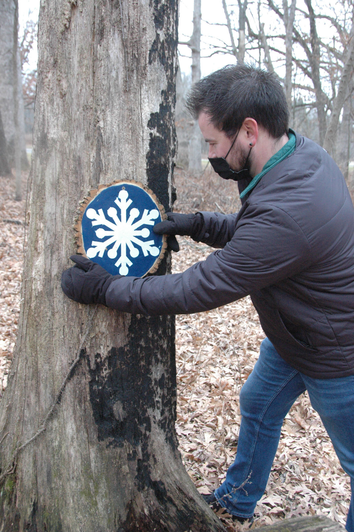 Snowflake at Lake of the Woods 2.jpg