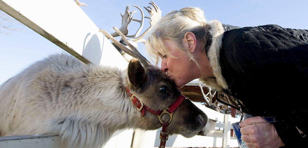 TOTM Hardy's Reindeer
