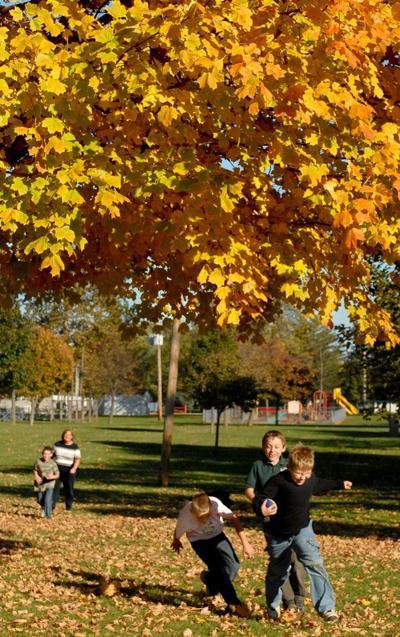 WWW fall 2007 football tree Schmidts