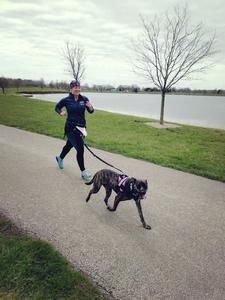 Switch up your run with a canine companion