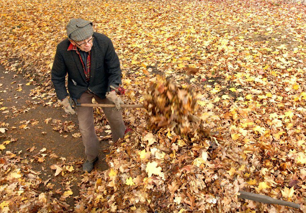 WWW fall 2007 rake man