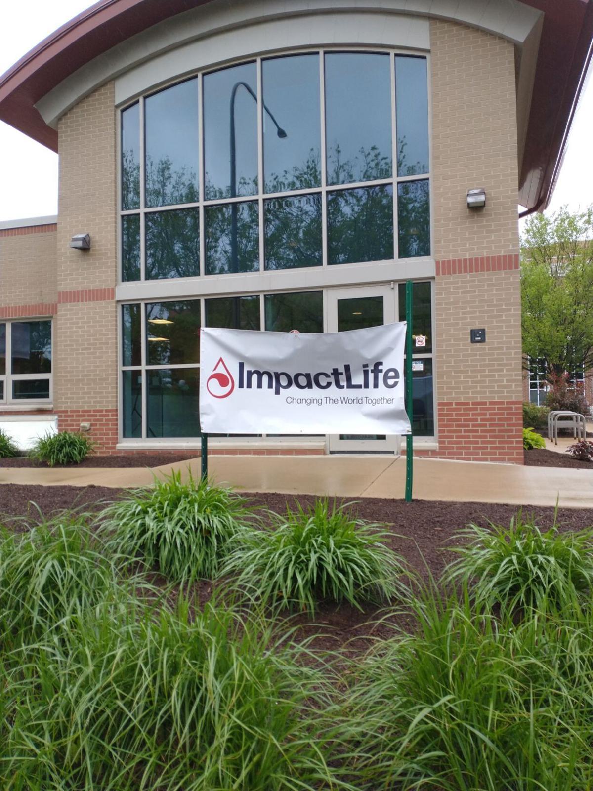 IYB impact life