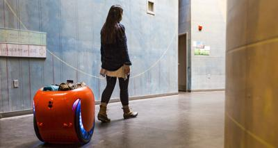 Illinois House approves regulations for futuristic personal robots