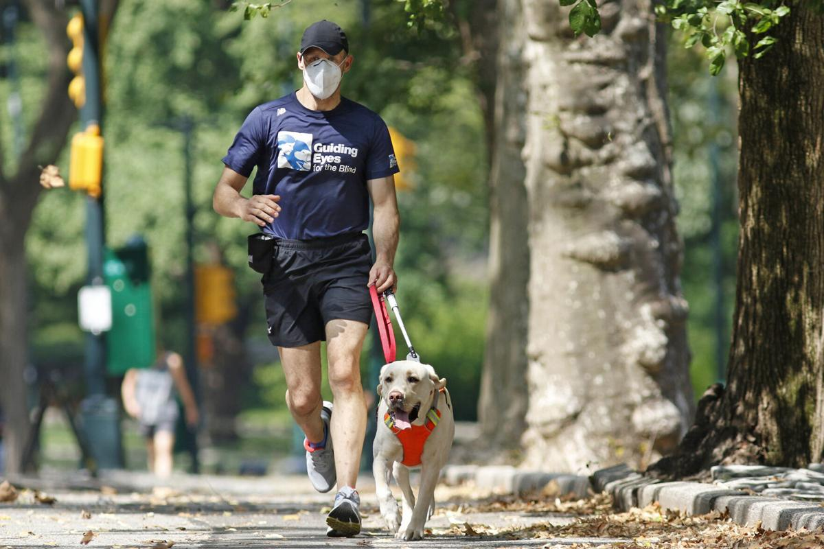 Blind Runners Guide Dogs