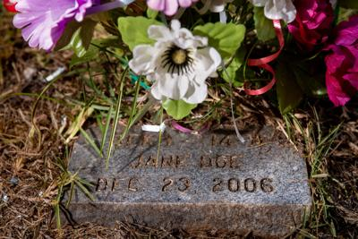 Dana Lynn Dodd