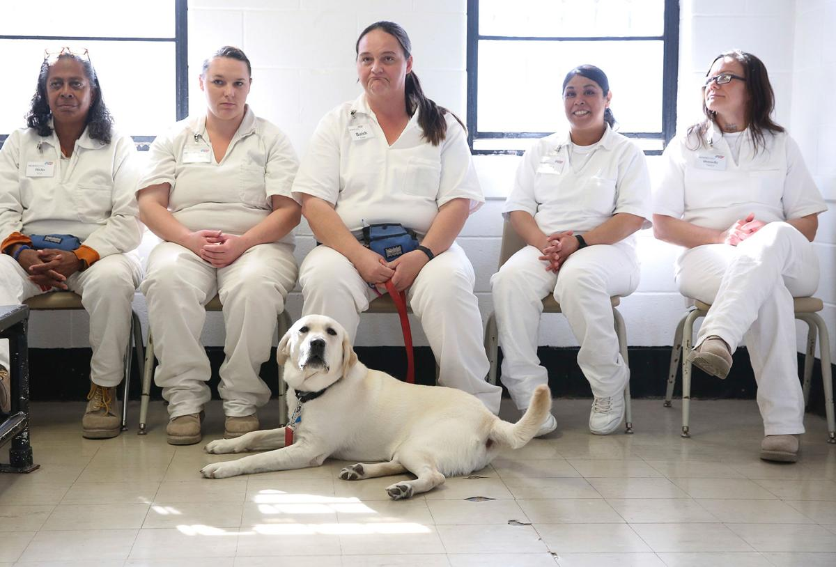 Female inmates in Texas prisons help train service dogs | | news