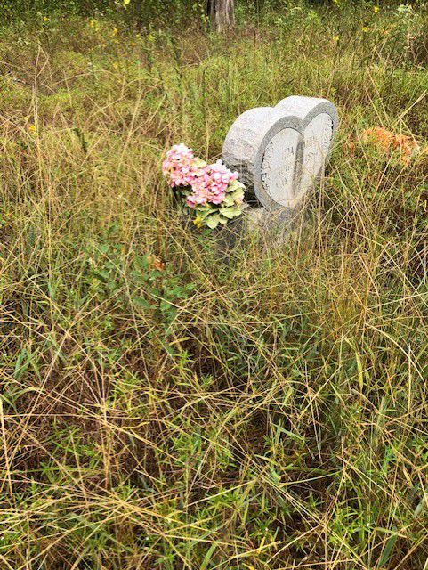 Cleanup, preservation efforts kick off at historical Pope City Cemetery