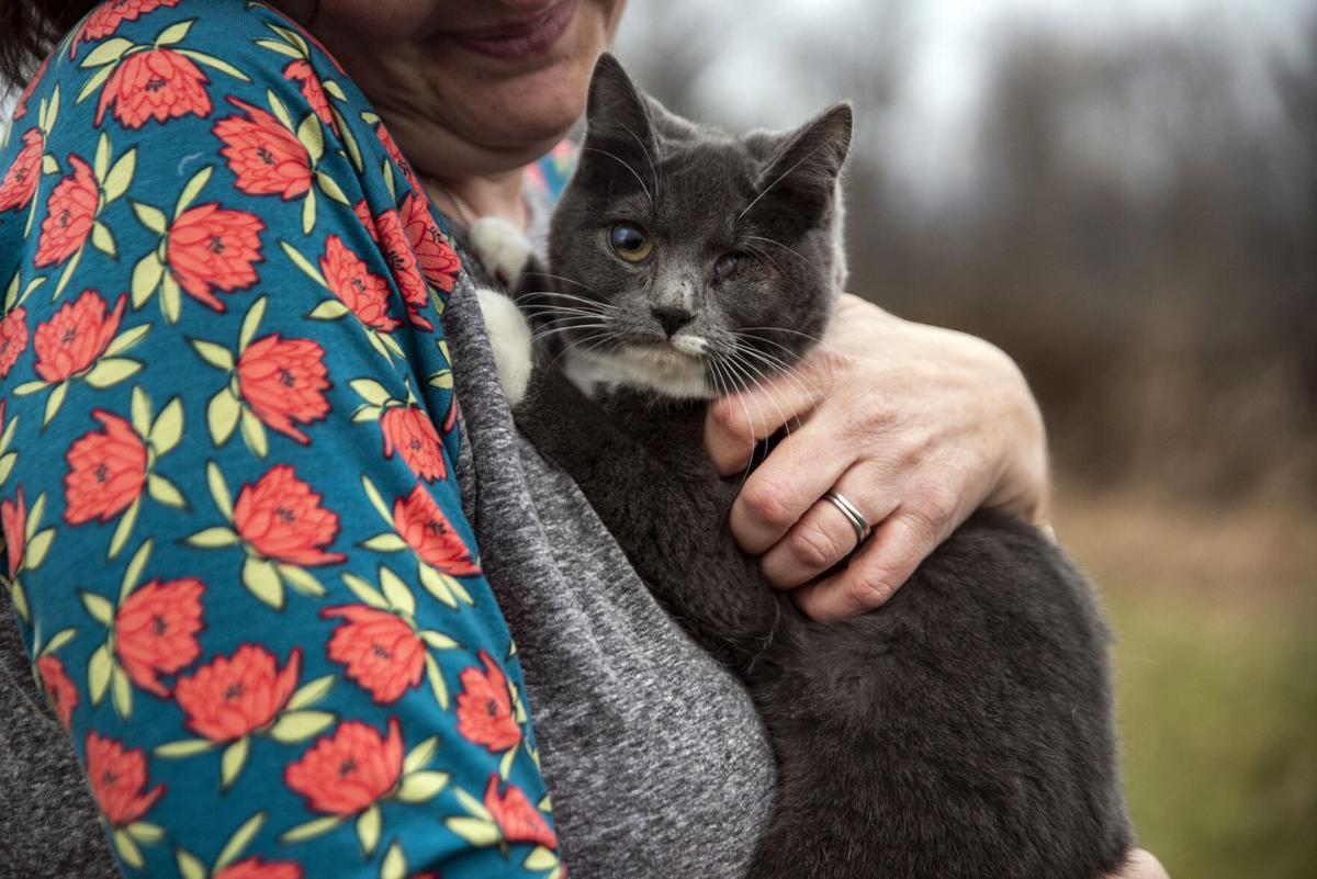 Exchange Animal Rescue
