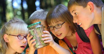 Plan summer educational trips to keeps kids' learning