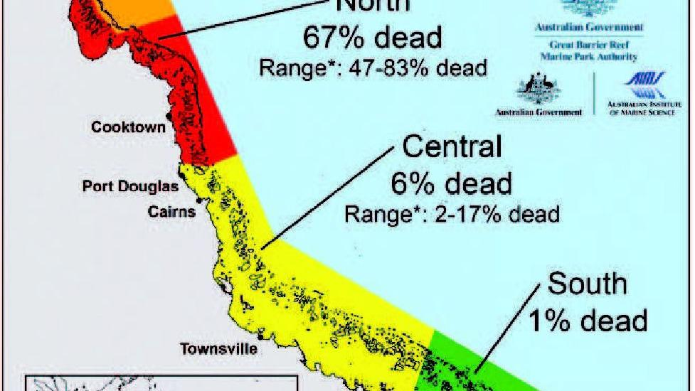Scientists Chart A 400 Mile Zone Of Coral Devastation From