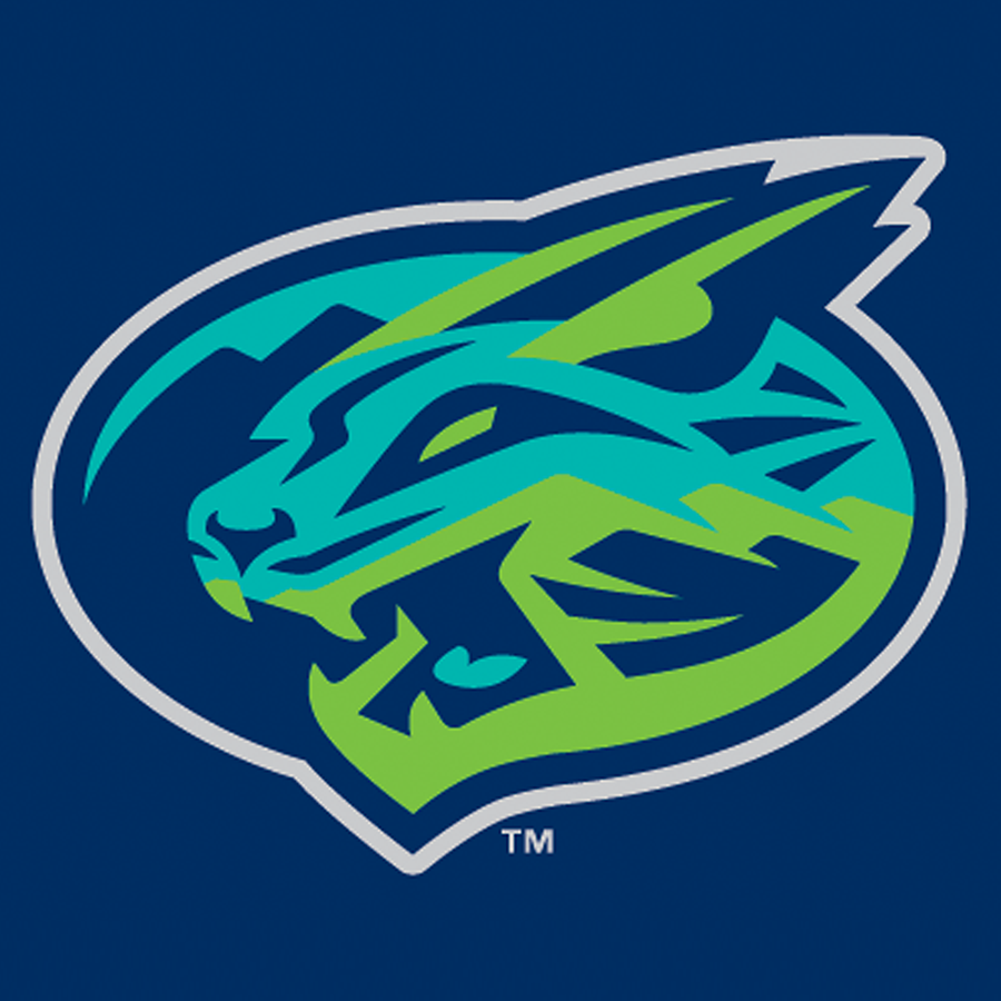 Hillcats' Castro Added To All-Star Team
