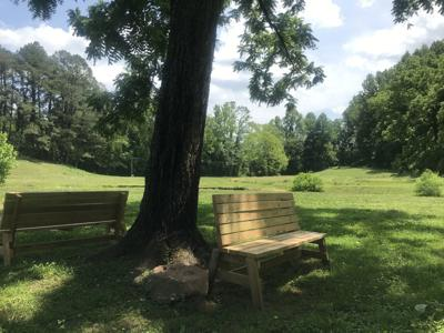 Amherst town park