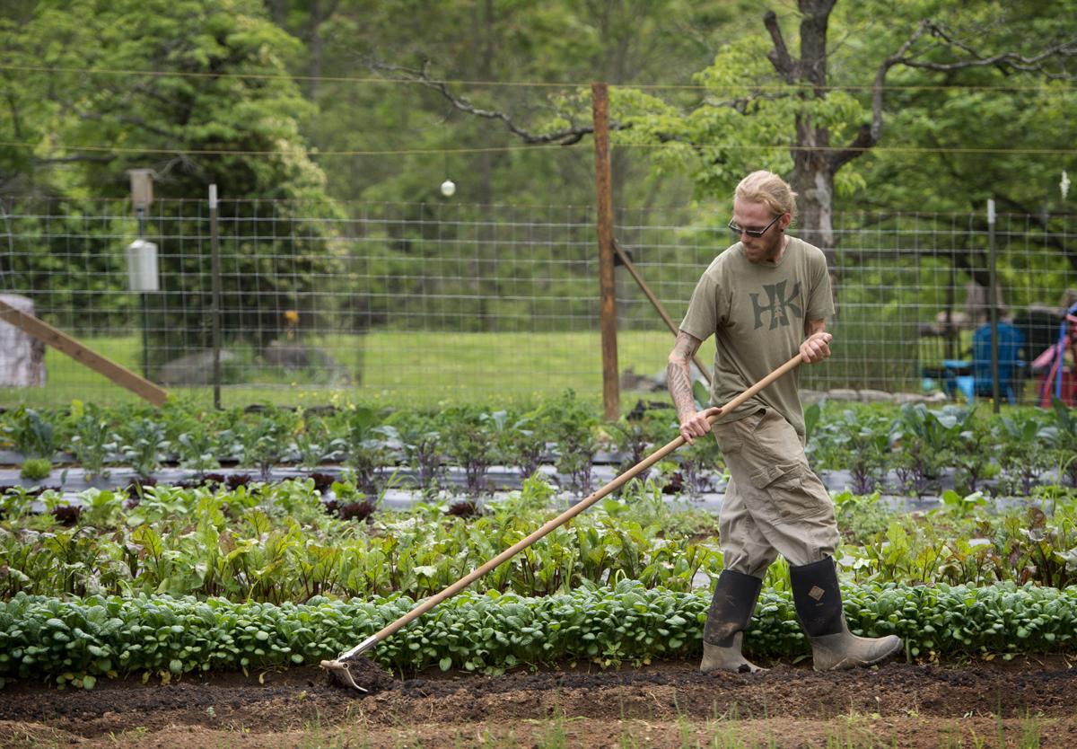 soulshine farms couple grows backyard garden into 6 000 square