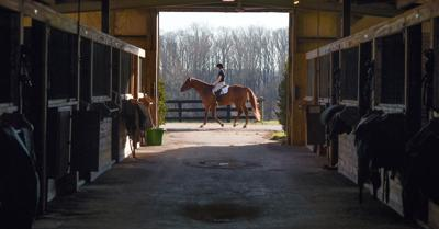 SBC stables