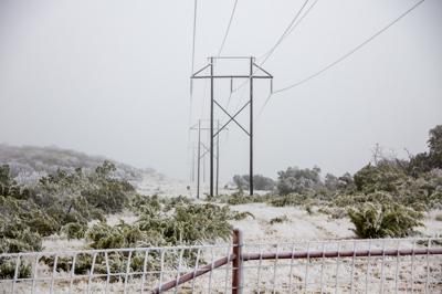 Icy Texas Power Line 0319