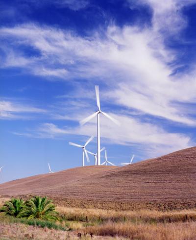 Shiloh Turbine