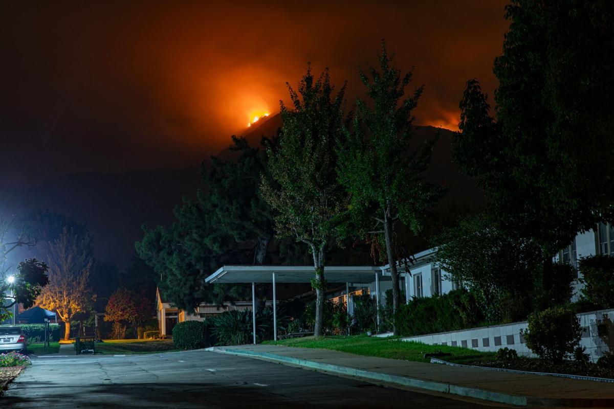 Wildfire Monrovia Pot070221