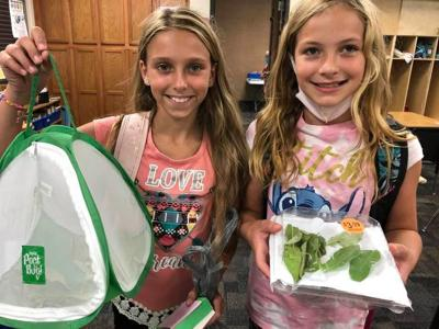 Students with butterflies