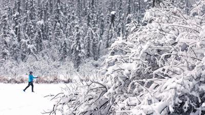 Snowy Ski