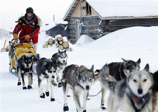extreme can dogs' against Iditarod Booties conditions feet protect nXZgqZHB