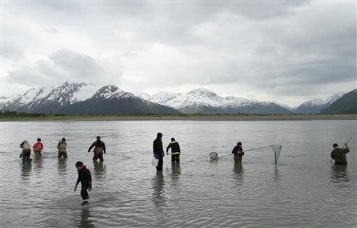 Alaska Daily Life Featured Newsminer Com