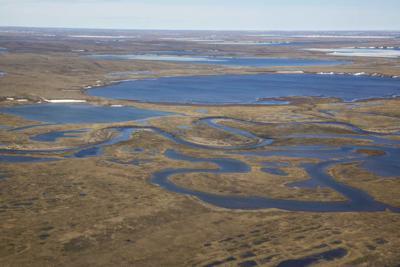 National Petroleum Reserve - Alaska