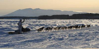 Restart of the Iditarod Trail Sled Dog Race