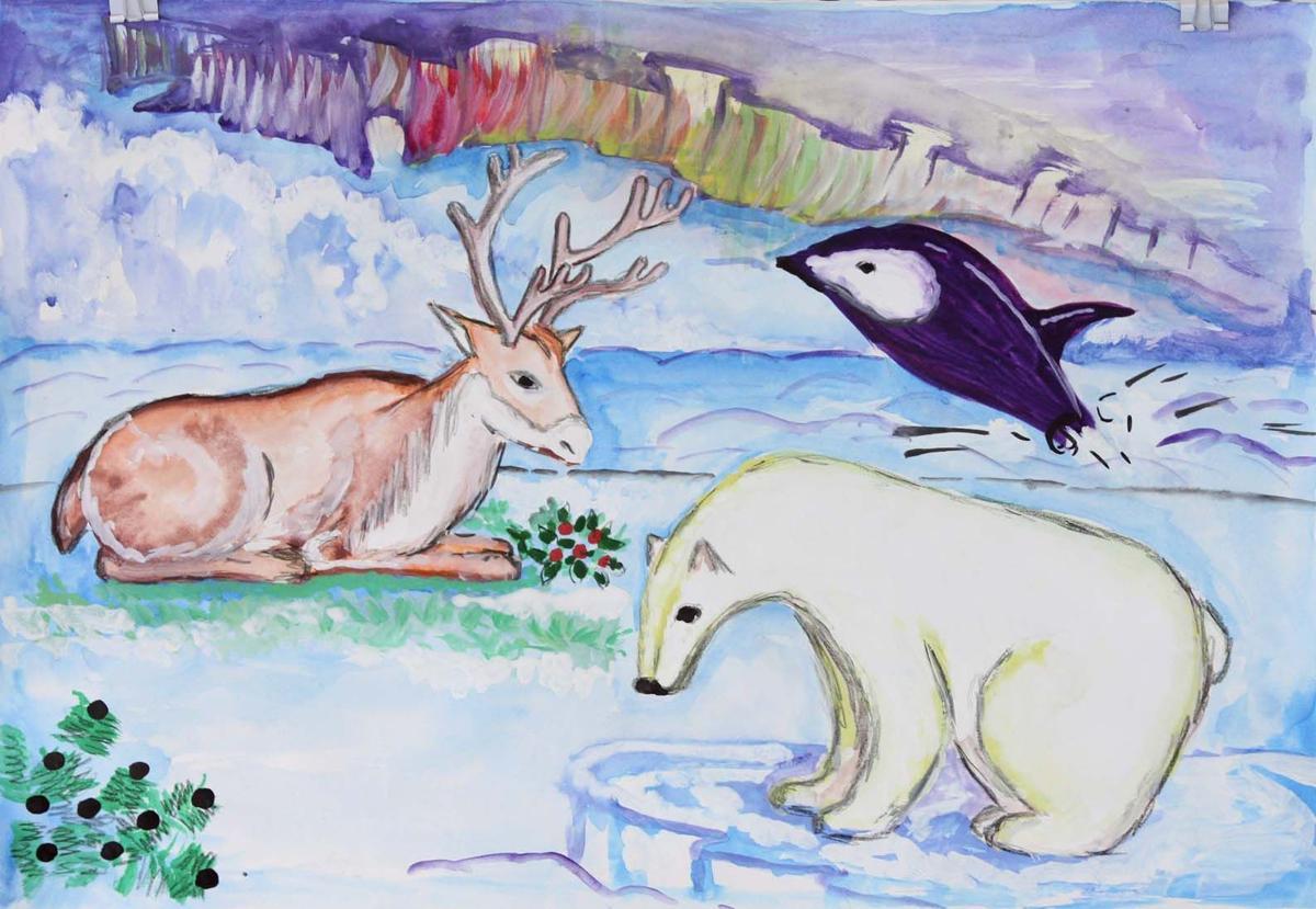 Arctic Science Summit Week