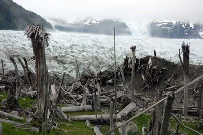 The La Perouse Glacier