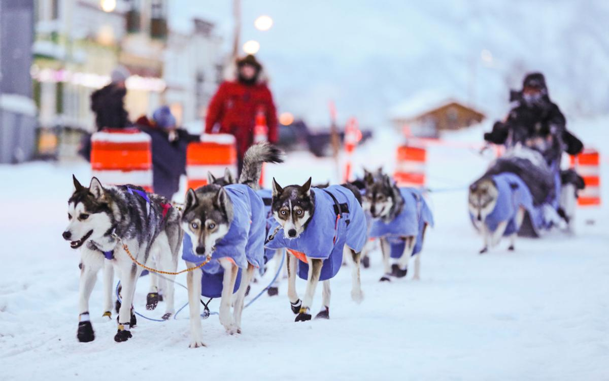 2019 Yukon Quest - Dawson City 3