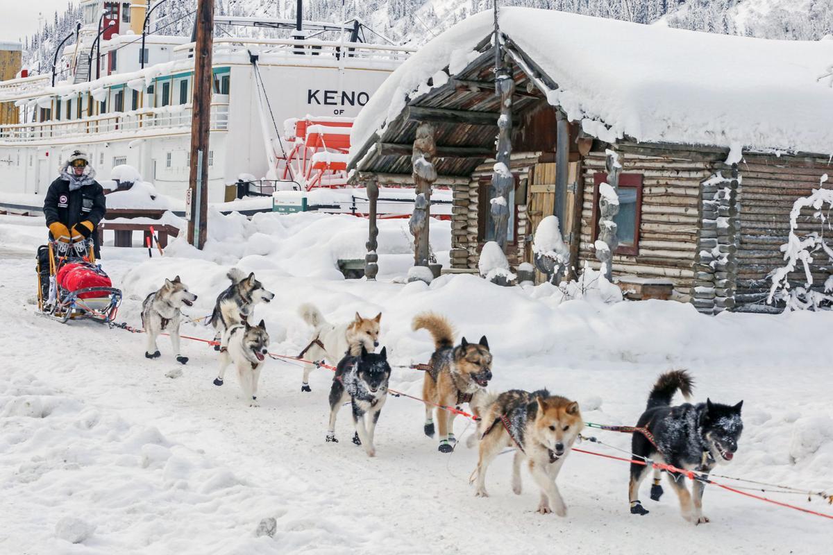 2019 Yukon Quest - Dawson City 3