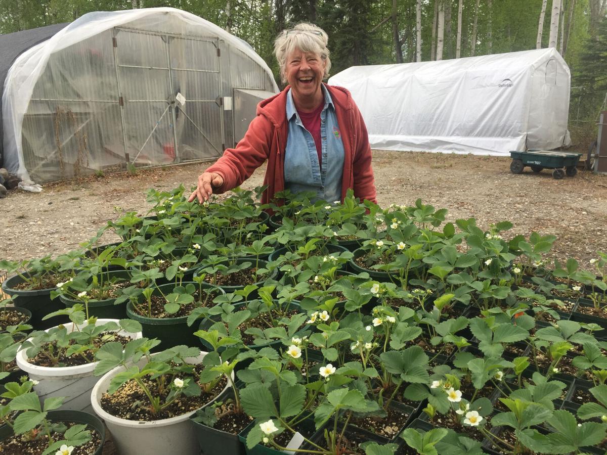 Hospice Plant Sale