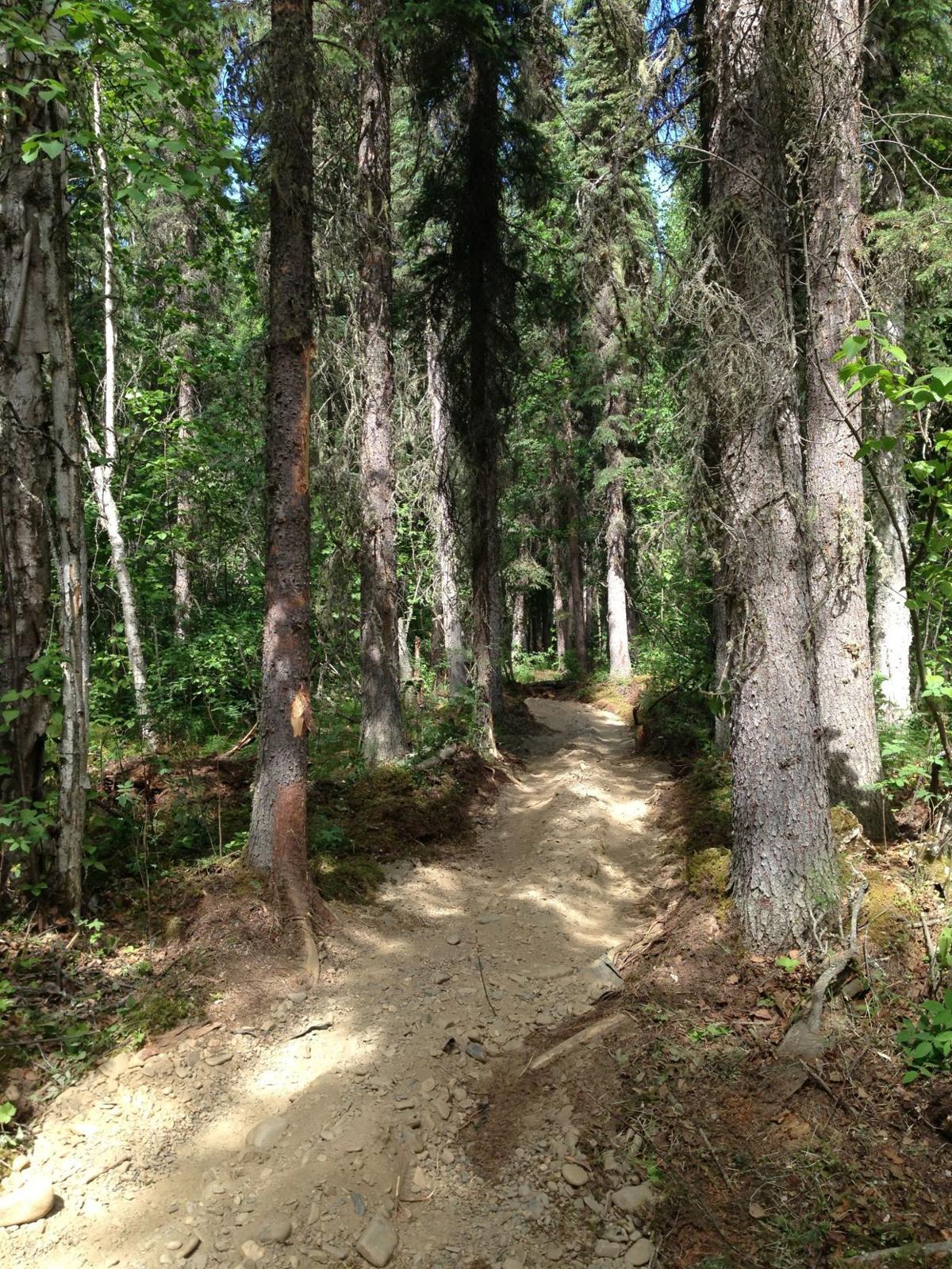 Trail work ahead: Three projects taking shape around Fairbanks