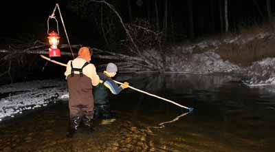 Spearing whitefish in the Chatanika River is barbaric, fun
