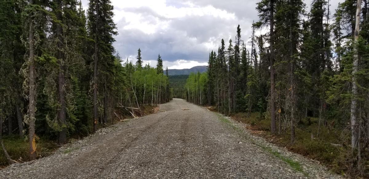 Rex Trail