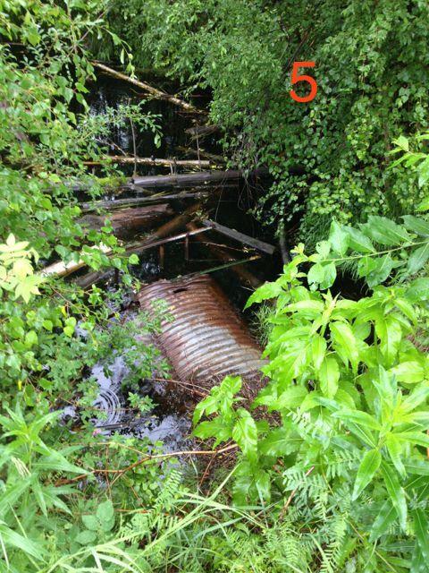 Cripple Creek restoration