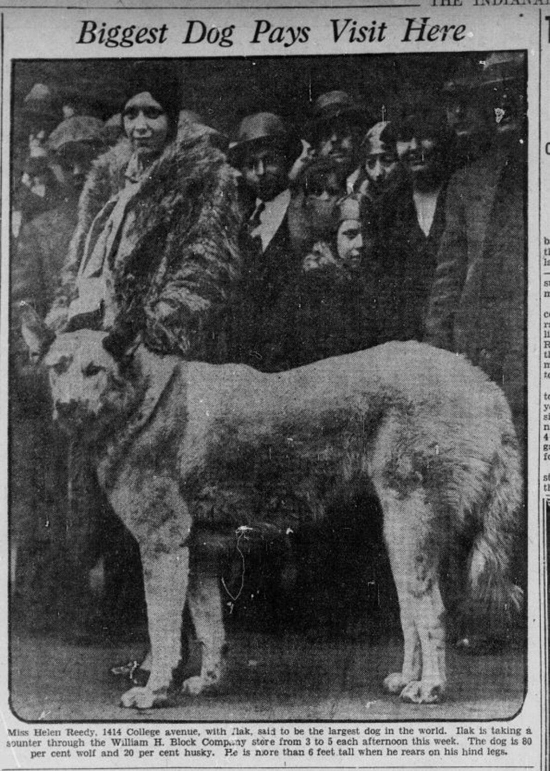 Ilak photo Indanopolis Times 1-14-1929