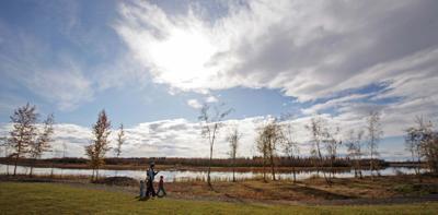 Tanana Lakes Recreation Area
